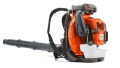 Rental store for Leaf Blower - Back Pack in Cedar Rapids IA