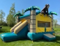Rental store for Tropical Slide - Bounce House in Cedar Rapids IA